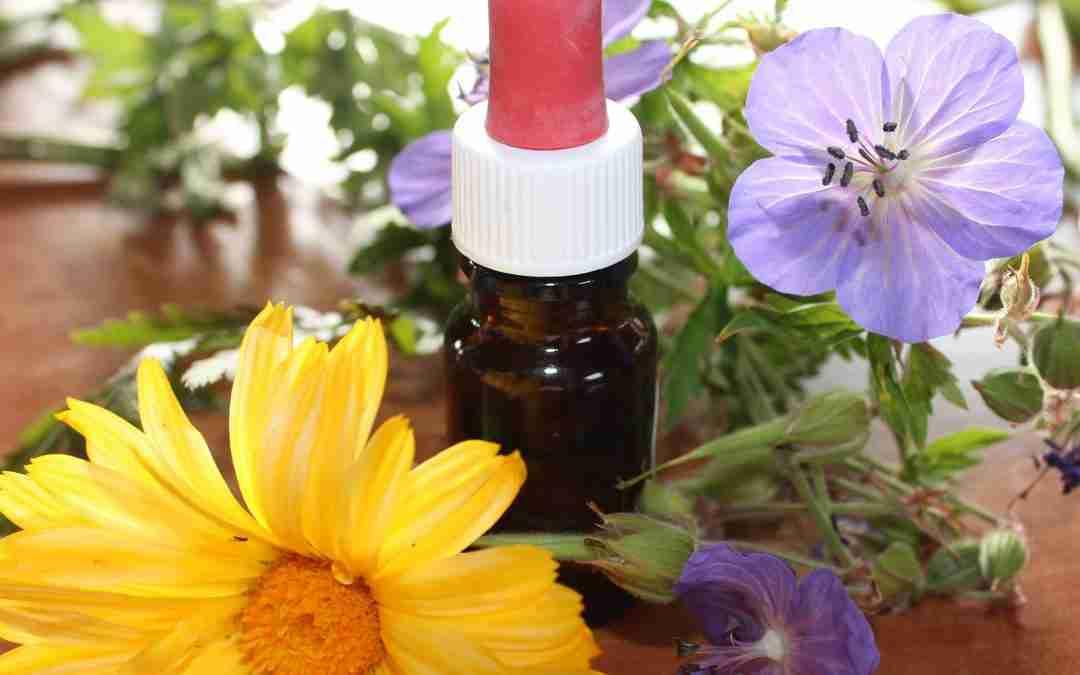 Iniciamos la sección de Aromaterapia